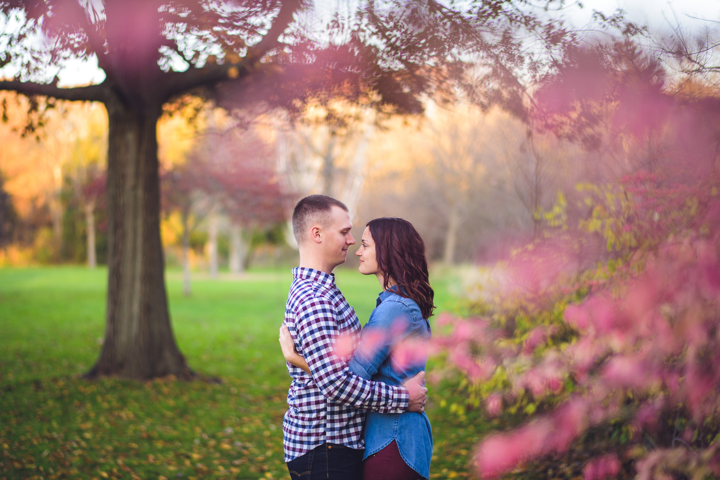 01-engagement-session-beautifull-fall-colors-kenosha-wedding-photographer